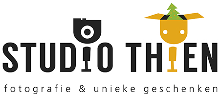 logo studio thien